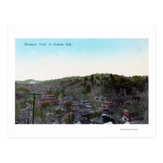 Aerial View of the TownSonora CA Postcard