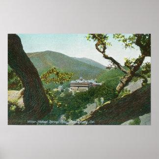 Aerial View of Witter Medical Springs Hotel Print