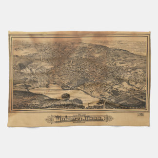 Aerial View of Woburn Massachusetts (1883) Kitchen Towels