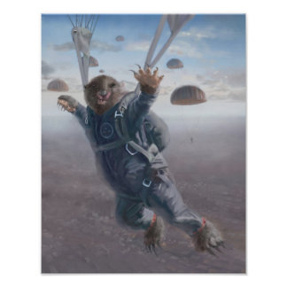 Aerial Wombat Joyride Posters