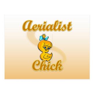 Aerialist Chick Postcard