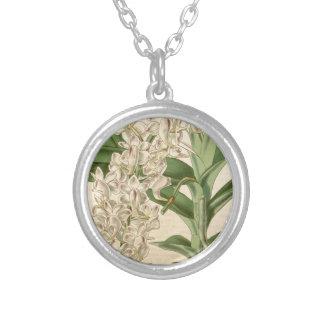 Aerides odorata (or odoratum) round pendant necklace