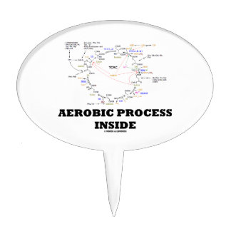 Aerobic Process Inside (Krebs Cycle) Cake Topper