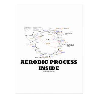 Aerobic Process Inside (Krebs Cycle) Postcard