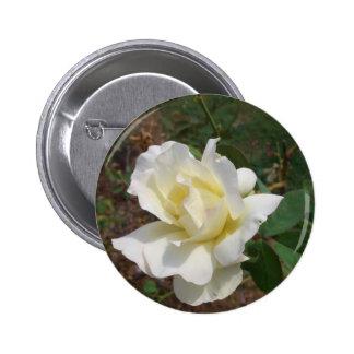 Aerodynamic White Rose - CricketDiane Art Products Pin