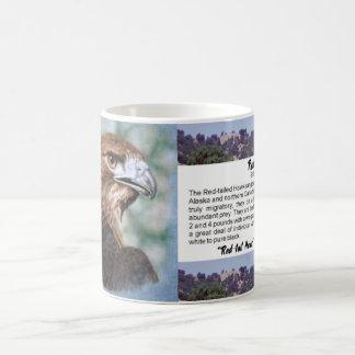 aerógrafo del halcón de la Rojo-cola Tazas De Café