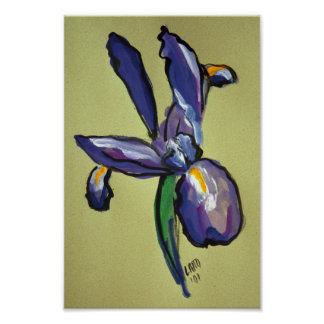 Aeronautical Iris Modern Painting Art Print Poster