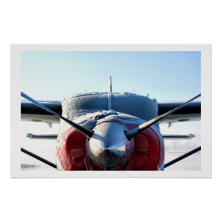 Aeroplano congelado póster