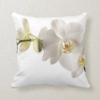Aerosol blanco de la flor de la orquídea del cojín
