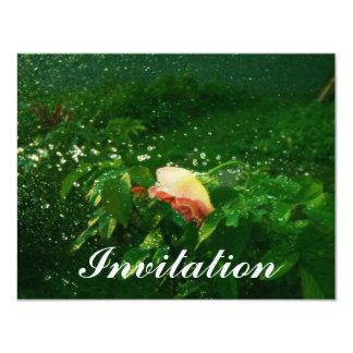 Aerosol color de rosa y de agua invitación 10,8 x 13,9 cm