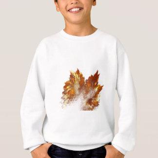 Aerosol del fractal del otoño sudadera