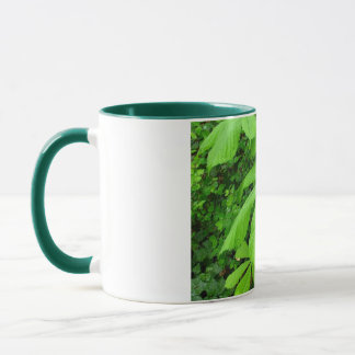 Aesculus hippocastanum tree mug