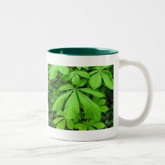 Aesculus hippocastanum tree Two-Tone coffee mug
