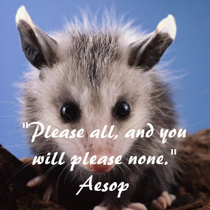Cute Opossum Gifts On Zazzle