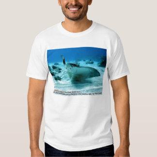 Aetobatus narinari (Spotted Eagle Ray) T Shirt
