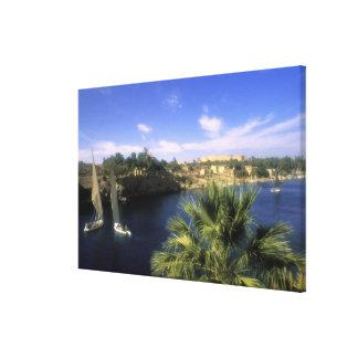 AF, Egipto, Egipto superior, Asuán. Río el Nilo, Impresiones En Lienzo Estiradas