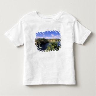 AF, Egypt, Upper Egypt, Aswan. River Nile, Toddler T-shirt