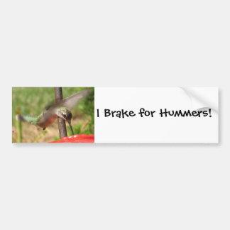 AF- Hummingbird Bumpersticker Car Bumper Sticker