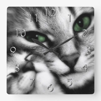 Afecto felino reloj cuadrado