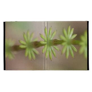 AFF Alaskan Forest Foliage iPad Folio Case
