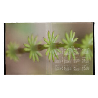 AFF Alaskan Forest Foliage iPad Folio Cases