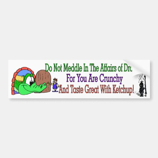 Affairs of Dragons Bumper Sticker