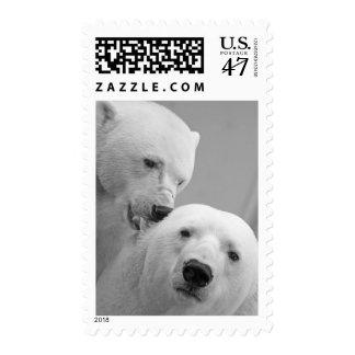 Affectionate Polar Bear Black and White Stamp