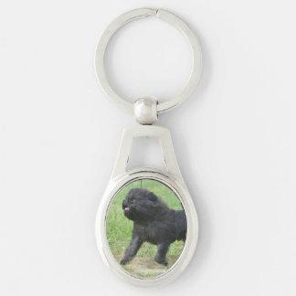 Affenpinscher adorable llaveros