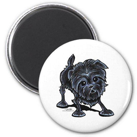 Affenpinscher at Play Magnet