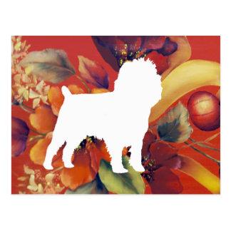 Affenpinscher Autumn Floral Postcard