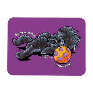 Affenpinscher Being Adorable Magnet