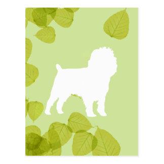 Affenpinscher Green Leaves Design Postcard
