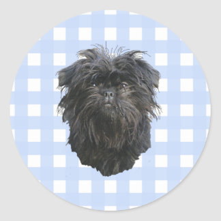 Affenpinscher on Blue Gingham Classic Round Sticker