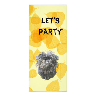 Affenpinscher on Gold Leaves 4x9.25 Paper Invitation Card