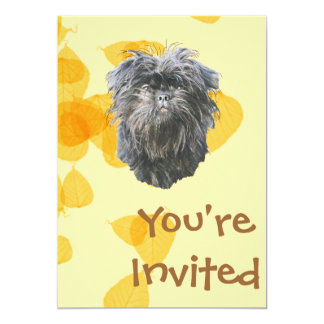 Affenpinscher on Gold Leaves 5x7 Paper Invitation Card