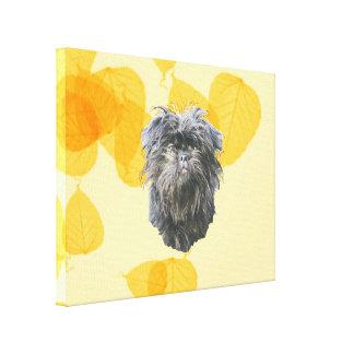 Affenpinscher on Gold Leaves Canvas Print