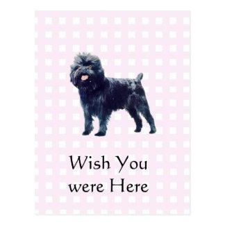 Affenpinscher on Pink Gingham Postcard