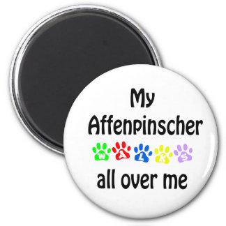 Affenpinscher Walks Design Magnet