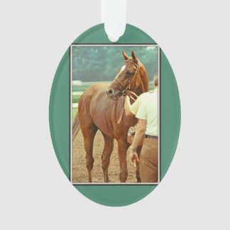 Affirmed Thoroughbred Racehorse 1978