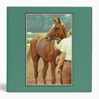 Affirmed Thoroughbred Racehorse 1978 Binder