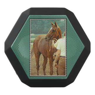 Affirmed Thoroughbred Racehorse 1978 Black Bluetooth Speaker