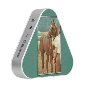Affirmed Thoroughbred Racehorse 1978 Bluetooth Speaker