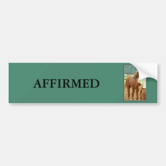 Affirmed Thoroughbred Racehorse 1978 Bumper Sticker
