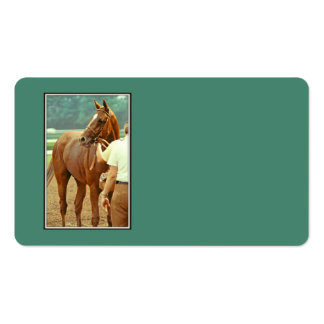 Affirmed Thoroughbred Racehorse 1978 Business Card