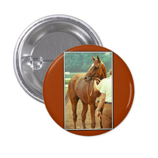 Affirmed Thoroughbred Racehorse 1978 Button
