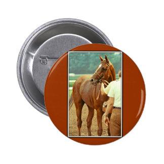 Affirmed Thoroughbred Racehorse 1978 2 Inch Round Button