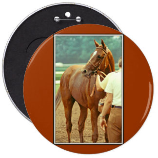 Affirmed Thoroughbred Racehorse 1978 6 Inch Round Button