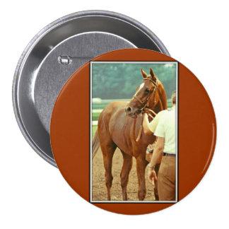 Affirmed Thoroughbred Racehorse 1978 3 Inch Round Button