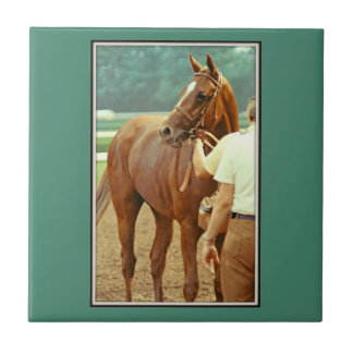 Affirmed Thoroughbred Racehorse 1978 Ceramic Tile