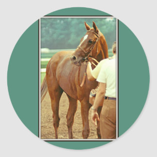 Affirmed Thoroughbred Racehorse 1978 Classic Round Sticker